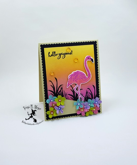 flamingo 3 wm