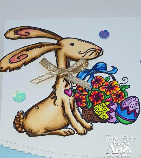 bunny4-closeup-wm