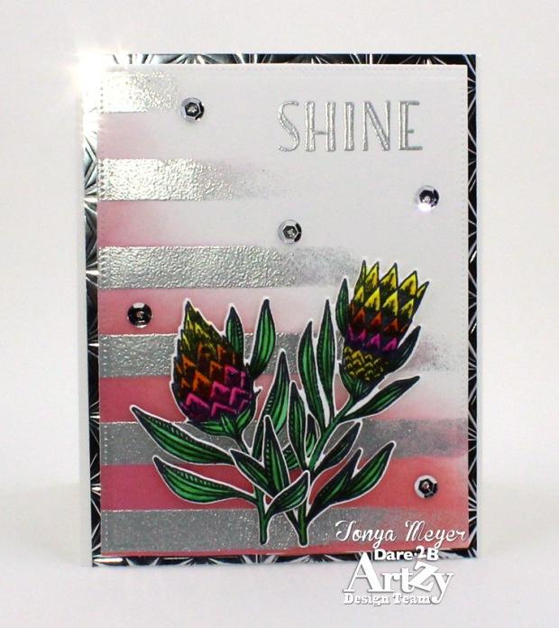 Shine 3 wm